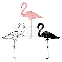Flamingo. Vector set. Hand drawn illustration, isolated elements . royalty-free stock vector art