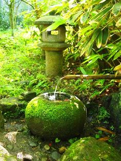 Water in a moss garden. -like the stone sphere pool
