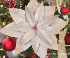 Christmas tree poinsettia flowers