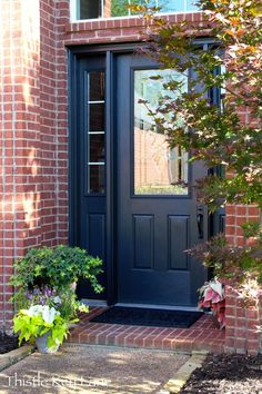 Sherwin Williams Iron Ore Paint - this color for front door and shutters