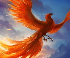 In Greek mythology, a phoenix or phenix (Ancient Greek φοίνιξ phóinīx) is a long-lived bird that is cyclically regenerated or reborn. Associated with the sun, a phoenix obtains new life by arising from the ashes of its predecessor. Phoenix Artwork, Phoenix Images, Phoenix Painting, Phoenix Wallpaper, Animal Spirit Guides, Spirit Animal, Fantasy Artwork, Phoenix Mythology, Greek Mythology
