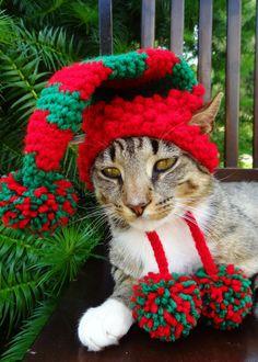 Gato perro Navidad Hat Cap-Hat Elf media para por iheartneedlework