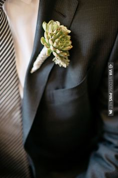 striped tie and mini succulent | CHECK OUT MORE IDEAS AT WEDDINGPINS.NET | #bridesmaids