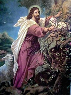 The Good Shepherd...finding His lost sheep...