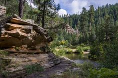 Hidden away on the Mogollon Rim are a series of hiking trails that will take you to some incredibly beautiful areas of the state. If you're looking for a relatively short one, then Kinder Crossing Trail #19 is perfect.