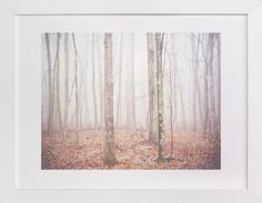 Foggy Forest by Smile Peace Love at minted.com