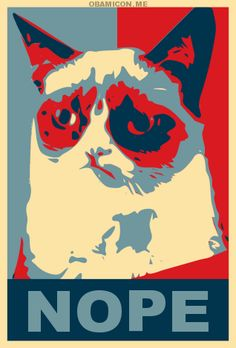 Funny pictures about Grumpy Cat for President. Oh, and cool pics about Grumpy Cat for President. Also, Grumpy Cat for President. Grumpy Cat Quotes, Grumpy Cat Meme, Cat Memes, Grumpy Kitty, Grump Cat, Grumpy Baby, Sphynx Cat, Crazy Cat Lady, Crazy Cats
