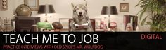 """Read more: https://www.luerzersarchive.com/en/features/digital/old-spices-mr-wolfdog-trains-you-for-interviews-354.html OLD SPICE'S MR. WOLFDOG TRAINS YOU FOR INTERVIEWS This Interview Trainer made for Mr. Wolfdog will help you prepare for future job interviews. It's incredibly difficult... but so is typing with paws.   Old Spice's new """"Director of Marketing"""", Mr. Wolfdog was introduced to us in March as part of Wieden + Kennedy's campaign for the Old Spice Wild Collection.  We've seen…"""