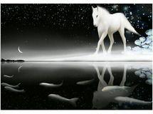 優しい馬 【A3】サイズ