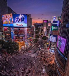#tokyo hashtag on Instagram • Photos and Videos Tumblr Quality, Times Square, Tokyo, Japan, Explore, Sunset, Photo And Video, Digital, Amazing