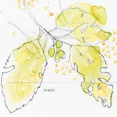 Contemporary tree leaves fine art print: Break - botanical nature pencil drawing…