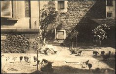 Walker Evans (American, 1903–1975). [Courtyard at 5, rue de la Santé, Paris], 1926. The Metropolitan Museum of Art, New York. Anonymous Gift, 1999 (1999.246.6) Rights and Reproduction: © Walker Evans Archive, The Metropolitan Museum of Art #paris