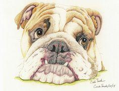 English Bulldog Dog Art Print from Drawing-Carla Smale-BobbysBears #Realism