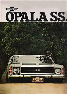 22384. GM - CHEVROLET 1976 - OPALA SS - 29x41-.