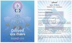 Healing the Chakras: Root Chakra ( Muladhara) - Awaken Mindset Chakra Mantra, Chakra Meditation, Chakra Healing, Thyroid Imbalance, Sanskrit Names, Eye Center, Chakra Cleanse, 5 Elements, Pineal Gland