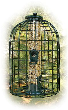 Caged Squirrel Proof Bird Feeder- 2 lb.