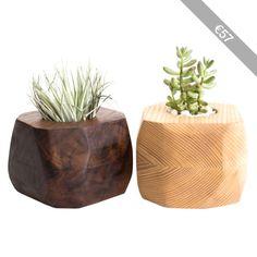 Few Bits Faceted Wood Succulent or Tillandsia Planter
