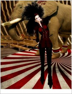 just the circus color theme I love.