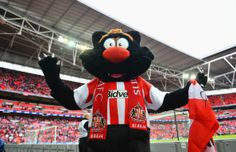 Sunderland mascot Samson poses prior to the Capital One Cup Final between Manchester City and Sunderland at Wembley Stadium on March 2, 2014...