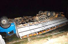Caminhão que transportava gado furtado tomba
