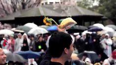 """""""島嶼天光""""「この島の夜明け」(2014年3月30日 - 東京)"""