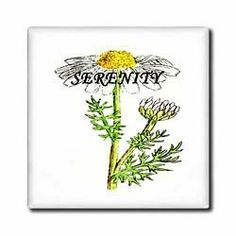 """1860 Daisy With Todays Words - 12 Inch Ceramic Tile by 3dRose. $22.99. High gloss finish. Image applied to the top surface. Clean with mild detergent. Construction grade. Floor installation not recommended.. Dimensions: 12"""" H x 12"""" W x 1/4"""" D. 1860 Daisy With Todays Words Tile is great for a backsplash, countertop or as an accent. This commercial quality construction grade tile has a high gloss finish. The image is applied to the top surface and can be cleaned with a mild detergent."""