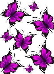 Butterfly Dragon, Butterfly Flowers, Butterflies, Locked Wallpaper, Iphone Wallpaper, Screen Wallpaper, I Love You Mum, Fashion Prints, Purple