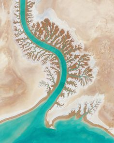 Leaf-like impressions are seen on the shore of Musa Bay near the Shadegan Wildlife Refuge in Iran. Can anyone help us identify this exact body of water and explain why formations like this occur? Source imagery: by dailyoverview Serge Najjar, Flying Lessons, Space City, Drone App, Aerial Images, Birds Eye View, Aerial Photography, Aerial View, Scrapbook