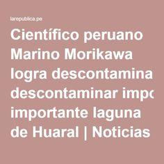 Científico peruano Marino Morikawa logra descontaminar importante laguna de Huaral   Noticias del Perú   LaRepublica.pe