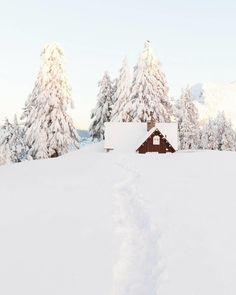 Snowed In Photo = @christianannschaffer #snowboard #ski #steepanddeep #freshpowder #bluebirdday #shreddy #northwestisbest #upperleftusa #newschoolers #snow #skiing #winter #travel #mountains #nature #cold #ice #white #frozen #snowboarding #hiking #landscape #tetons #photooftheday #landscapes #naturephotography #madeinusa #arcirisglasses #woodsunglasses @arc.iris by ai.deep