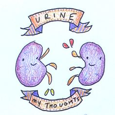Urine My Thoughts - Original Kidney Drawing