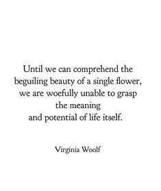 Virginia Woolf Ralph Waldo Emerson, Eleanor Roosevelt, Pretty Words, Beautiful Words, Beautiful Flowers, Mark Twain, Poem Quotes, Life Quotes, Virginia Woolf Quotes