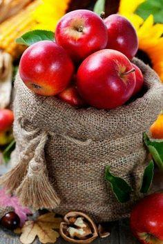 Harvest time by Natalia Klenova on Fruit And Veg, Fruits And Vegetables, Fresh Fruit, Fresco, Fruit Picture, Apple Harvest, Harvest Time, Apple Season, Preserved Lemons