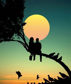 Photo Collage - Excellent Ways For Top Level Out Of Your Photography Silhouette Couple, Silhouette Painting, Silhouette Pictures, Silhouette Photography, Moon Photography, Love Wallpapers Romantic, Wallpapers Of Nature, Lovers Images, Cute Couple Art