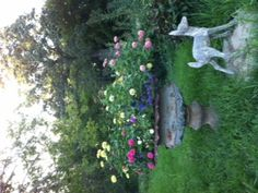 Zinnia seeds make an inexpensive show in my friend Tara's antique garden urn.  Simply beautiful!