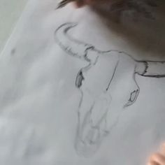 Drawing a bulls skull for a wonderful project. I first pencilled in the outline, which I only do for customer work. Then I ink the lines and add some shading and last erase my pencil lines. I just love branding projects like this one ❤️ Bull Skulls, Just Love, Outline, Pencil, Branding, Ink, Drawings, Fall, Videos