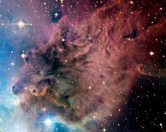 Fox Fur Nebula-It looks like someone is riding a horse with dust billowing behind him.