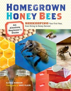 Homegrown Honey Bees : An Absolute Beginner's Guide to Beekeeping Your First Year, from Hiving to Honey Harvest by Alethea Morrison Paperback) for sale online Beekeeping Books, Backyard Beekeeping, Harvesting Honey, Bee Hive Plans, Beekeeping For Beginners, Bee Book, Bee Supplies, Raising Bees, Mother Earth News