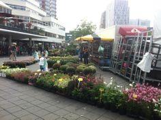 De Blaak Markt every Tuesday and Thurday