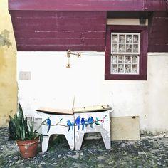 by rpmiguel via Instagram #Lisbon #Portugal #window