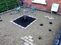 This low maintenance city front garden was created using natural stone cobbles and Glenview Litegold gravel. Driveway Blocks, Magical Room, Paint Storage, Hiding Places, Landscaping Company, Plant Wall, Clematis, Topiary, Horticulture