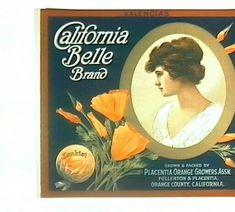 GENUINE VINTAGE SHAMROCK DIE CUT ADVERTISING SIGN ORANGE COUNTY CALIFORNIA 1930