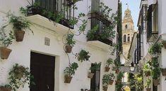 Monuments in Cordoba, Spain: Calleja de las Flores. Cultural ...