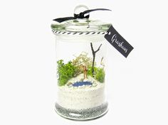 beach terrarium... love the little pond and the airy atmosphere!