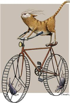 Made by: Dario Castillejos from Cuba (Mouse driven Cat Bike, funny) - Honorable…