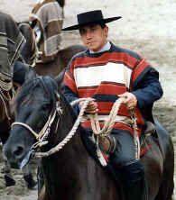 huaso | chilean analog (variant) to gaucho