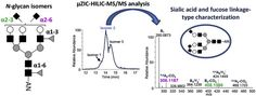 #ACA: Zwitterionic-hydrophilic interaction capillary liquid chromatography coupled to tandem mass spectrometry for the… #MassSpec