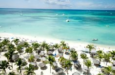 Aruba honeymoon packages are guaranteed sunshine. Find the best all-inclusive Aruba resort for you. The friendly Aruba honeymoon experts will make your planning easy. All Inclusive Destination Weddings, All Inclusive Beach Resorts, Aruba Resorts, Caribbean Vacations, Hotels And Resorts, Wedding Resorts, Aruba Aruba, Aruba Weddings, Wedding Venues