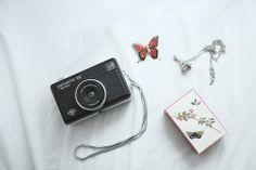 cameras & butterflies