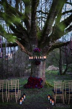36 Ideas To Throw A Halloween Wedding With Style: #13. Moody florals on the tree and chandelier make the ceremony spot chic